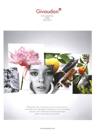 FLAVOURS & FRAGRANCE MANUFACTURERS